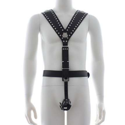 Harness com Cockring, Harnesses, , welcomelover